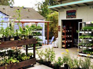 garden center may 540