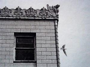 hbh seagull 540